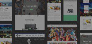 Screenshot of multiple client websites
