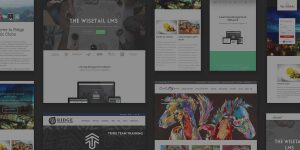 collage of website designs for Big Storm clients