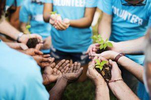 volunteers holding plants