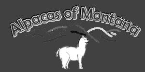 Alpacas of Montana